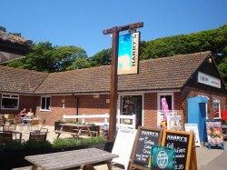 Harry's Bar at Durdle Door Holiday Park
